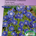 Phac�lie visqueux Blue Foam