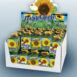 Greengift Tournesol 40 pcs en Showbox