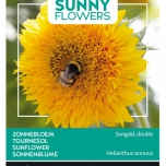 Tournesol - Sunny Flowers - Sungold