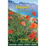 Poppies of the world - Coquelicot Rhoeas Shirley Double Varie