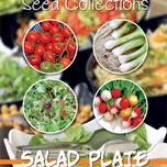 Collection 4 en 1 Les salades
