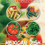 Collection 4 en 1 Repas mexicain