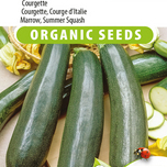 Courgette, Courge d'Italie Black Beauty EKO