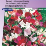 Pois de Senteur Royal Family Mix – Lathyrus Odoratus