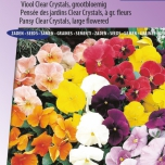 Pensée Holland Giants Mix – Viola Clear Crystals