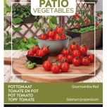 Tomate en pot Gourmandise Red - Buzzy Patio Vegetables